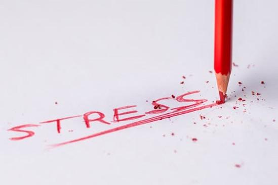 中考在即,教育焦虑却并不比高考。〖页びΩ萌绾巍白跃取保?> </div> </div> <div id=