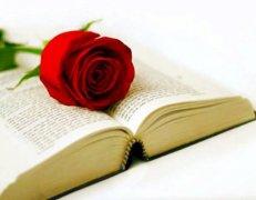 西班牙:书与玫瑰的情人