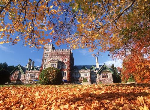 加拿大大学(本科)申请条件及留学费用